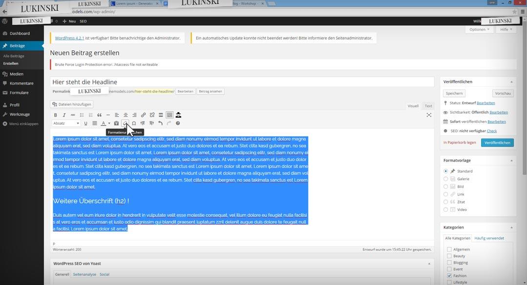 wordpress-bloggin-step5-formatierung