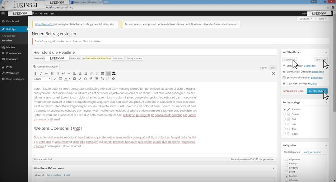 wordpress-bloggin-step8-veroeffentlichen