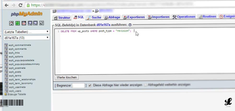 website-wordpress-seiten-beitraege-revisionen-deaktivieren-begrenzen-phpmyadmin-datenbank