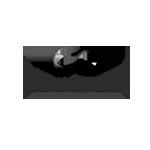 werbeagentur-logo-claudia-schnetzke-consulting