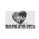 werbeagentur-logo-flirtuniversity-flirtcoach