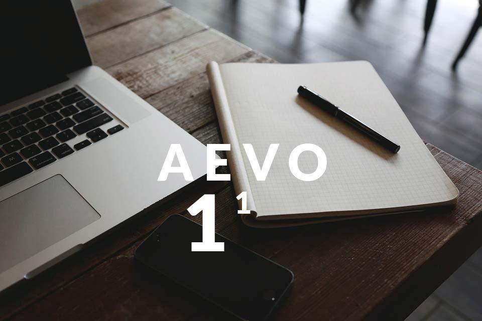 Berufsausbilder werden: AEVO Fragen 1 - Ausbildungsvoraussetzungen prüfen (für Immobilienmakler, Handwerk & Co.)