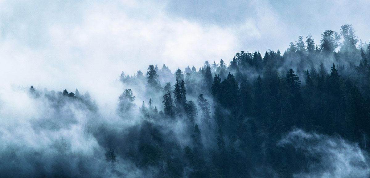 Wetter in Wiesbaden: Wind, Temperatur und Gewitter